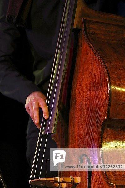 Conrad Steinhoff of the Gerold Heitbaum Quartet plucking on contrabass  Wittenberg  Saxony-Anhalt  Germany  Europe