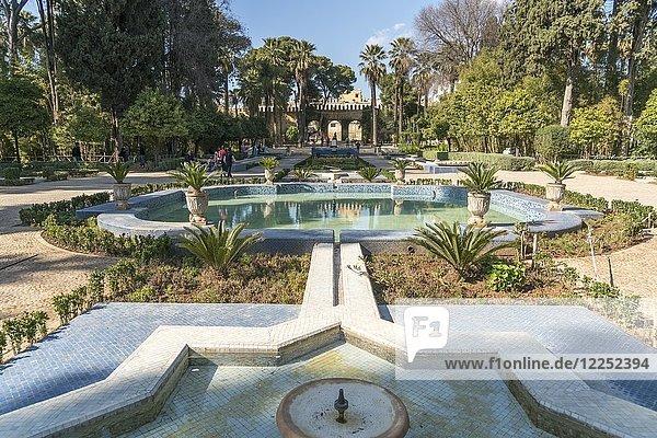 Jardin Jnan Sbil Garden  Bou Jeloud Gardens  Fez  Morocco  Africa