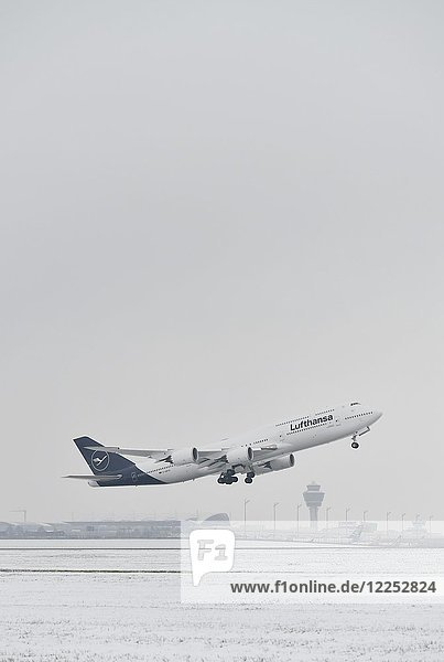 Lufthansa Boeing B747-800  Start bei Schnee mit Tower im Hintergrund  Flughafen München  Oberbayern  Deutschland  Europa