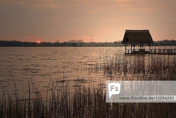 Sonnenaufgang Hemmelsdorfer See  Timmendorfer Strand  Schleswig-Holstein  Deutschland  Europa