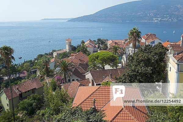 Ausblick auf die Altstadt  Herceg Novi  Bucht von Kotor  Montenegro  Europa