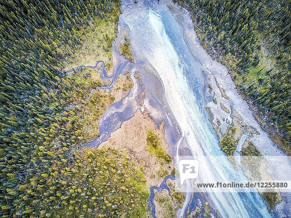 Aerial view of Bow river tributary in forest of Rockies Mountains  Banff National Park  Alberta  Canada  North America