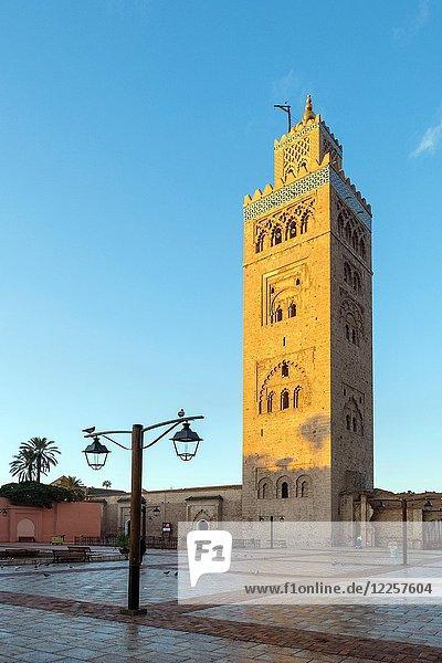 Koutoubia Moschee bei Sonnenaufgang  Marrakesch  Marrakesch-Safi  Marokko  Afrika