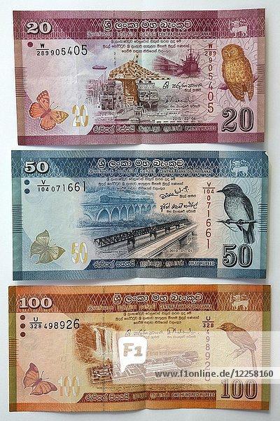 Geldscheine  verschiedene Banknoten  20  50  100 Sri-Lanka-Rupien  Sri Lanka  Asien