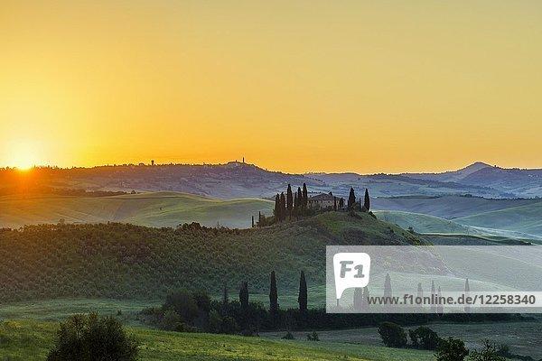 Toskanische Landschaft mit Zypressen und Bauerngehöft  Sonnenaufgang  San Quirico d'Orcia  Val d'Orcia  Toskana  Italien  Europa