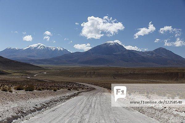 Schotterpiste führt durch Altiplano  hinten schneebedeckte Vulkane  bei Colchane  Tarapaca  Chile  Südamerika