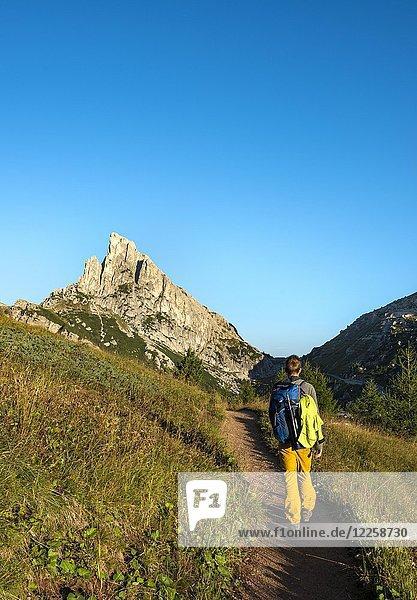 Wanderer auf einem Wanderweg  hinten Gipfel Sassa di Stria  Falzaregopass  Dolomiten  Südtirol  Trentino-Alto Adige  Italien  Europa