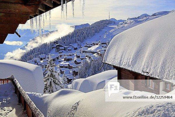 Dorfansicht mit verschneiten Häusern  Bettmeralp  Aletschgebiet  Oberwallis  Wallis  Schweiz  Europa