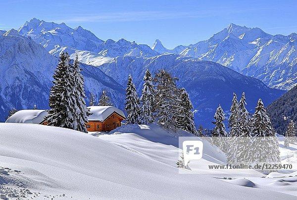 Winterlandschaft mit tief verschneiten Chalets  hinten Gipfel Dom  4545m  Matterhorn  4478m  und Weisshorn  4505m  Riederalp  Aletschgebiet  Oberwallis  Wallis  Schweiz  Europa