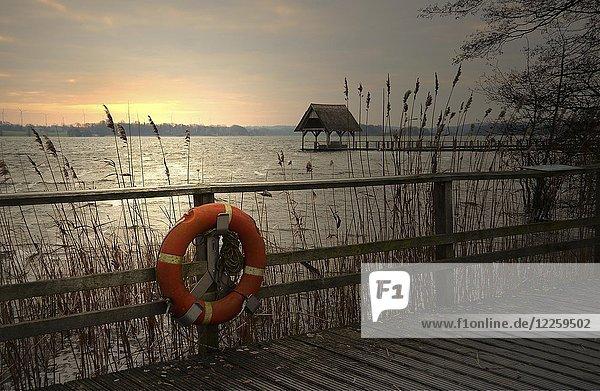 Holzsteg mit Rettungsring  Morgendämmerung  Hemmelsdorfer See  Timmendorfer Strand  Schleswig-Holstein  Deutschland  Europa