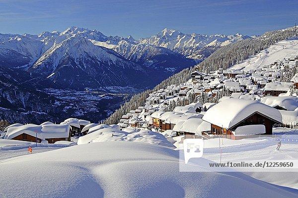 Dorfansicht über dem Rhonetal tief verschneit  dahinter Dom 4545m  Matterhorn 4478m und Weisshorn 4505m  Bettmeralp  Aletschgebiet  Oberwallis  Wallis  Schweiz  Europa