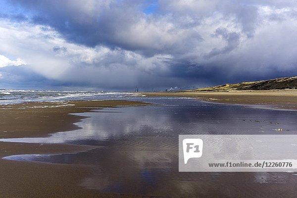 Nordseestrand bei Zandvoort  Provinz Nordholland