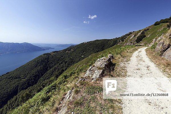 Wanderweg zum Monte Morissolo auf Lago Maggiore  Cannero Riviera  Provinz Verbano-Cusio-Ossola  Region Piemont  Italien  Europa