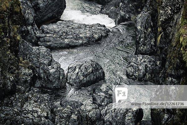 Felsen im Englishman River  Englishman River Falls Provincial Park  Errington  Vancouver Island  British Columbia  Kanada  Nordamerika