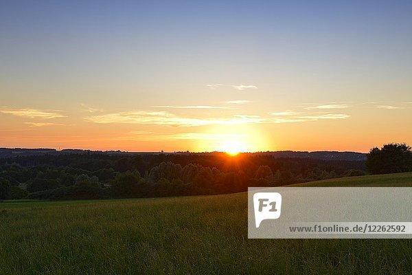 Sonnenuntergang über der Pupplinger Au bei Ergertshausen  Gemeinde Egling  Oberbayern  Bayern  Deutschland  Europa