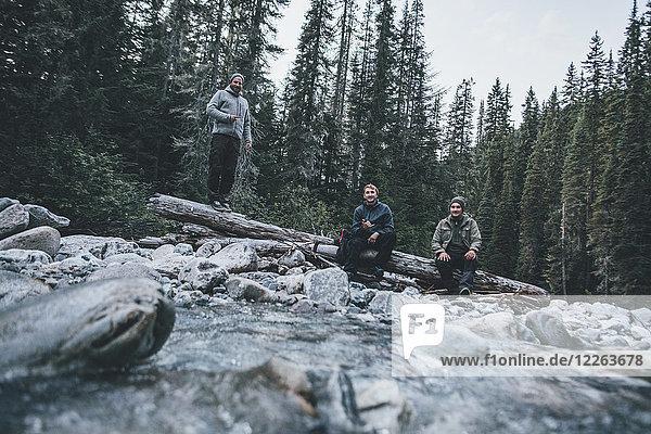 Kanada  British Columbia  Glacier National Park  drei Freunde am Illecillewaet River im Wald