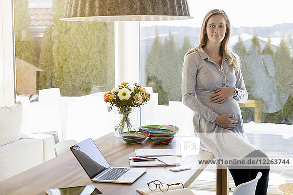 Portrait of smiling pregnant woman working from home