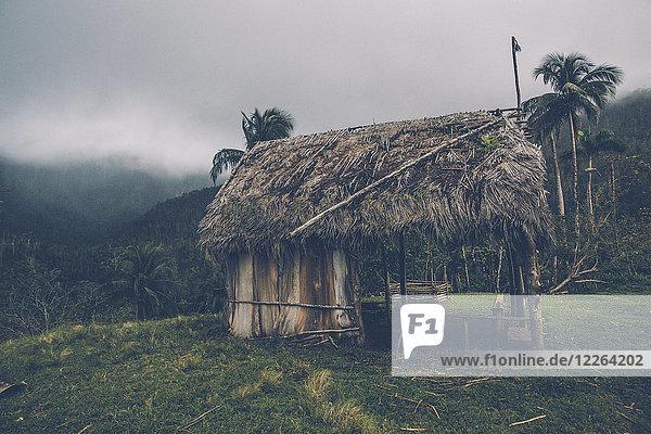 Kuba  Hütte im Alejandro de Humboldt Nationalpark