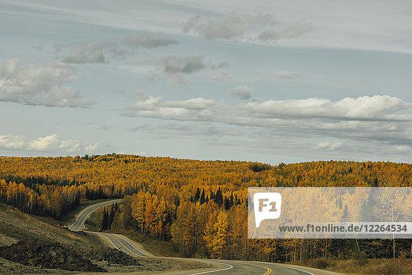 Kanada  British Columbia  Northern Rockies  Alaska Highway im Herbst