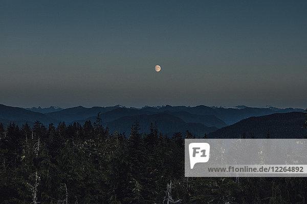 Kanada  British Columbia  Skeena-Queen Charlotte A  Kaien Island  Prince Rupert  Mount Hays  Mond bei Nacht