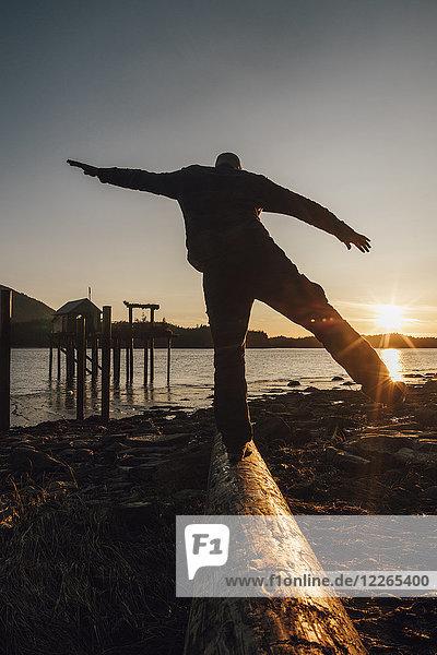 Kanada  British Columbia  Port Edward  Mann  der bei Sonnenuntergang auf dem Baumstamm balanciert.