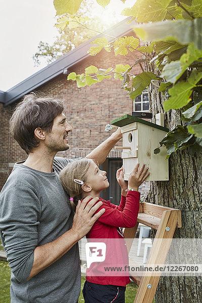 Vater und Tochter hängen Nistkasten im Garten auf
