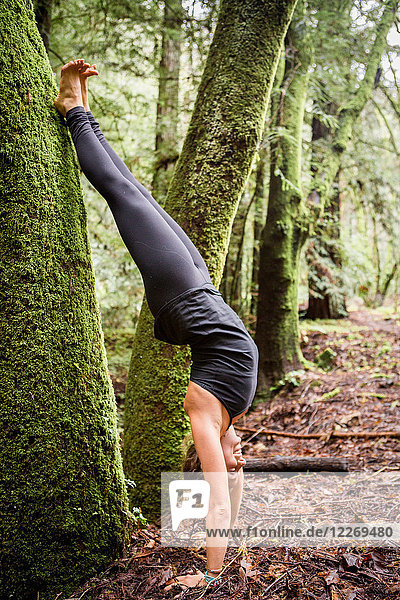 Young woman practicing yoga in forest  doing handstand against tree trunk