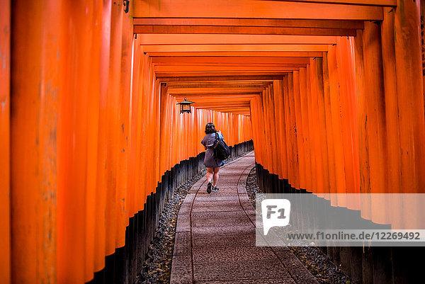 Frau zu Fuss am Torii-Tor  Fushimi-Inari-Schrein  Kyoto  Japan