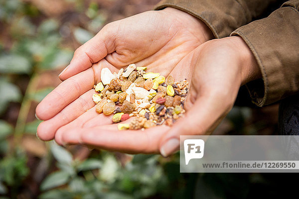 Woman's cupped hands holding dried fruit and nut mix