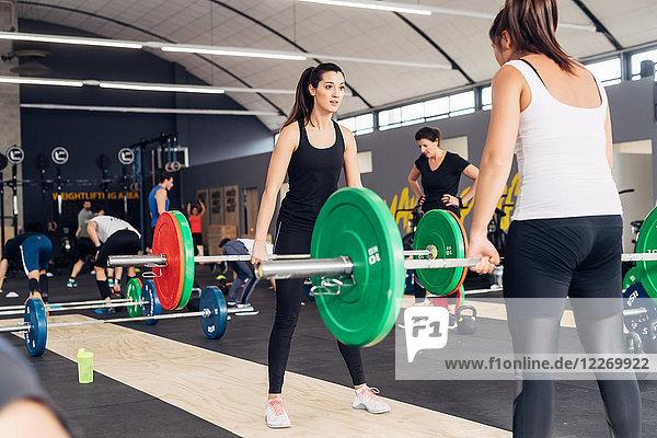 Frauen beim Gewichtheben mit Hanteln im Fitnessstudio