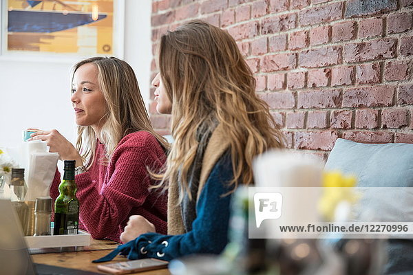 Female friends sitting in cafe  drinking coffee
