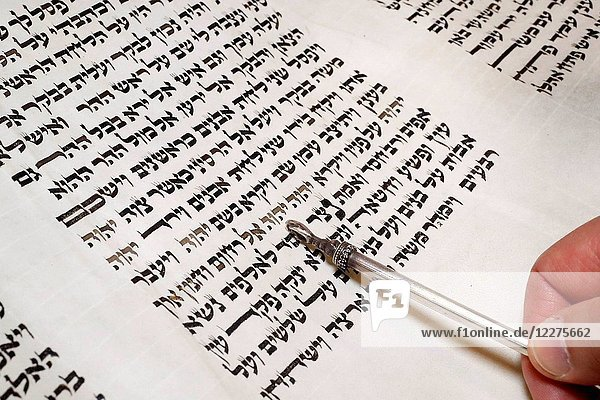 Torah scrolls and yad.