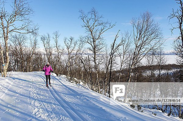 A woman (Model Release 20020923-10) is cross-country skiing at Bjorkliden in Swedish Lapland  northern Sweden.