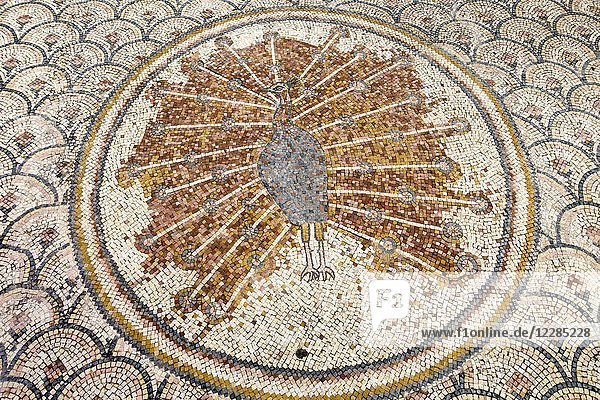 Byzantine Mosaic at Capernaum. Peacock. This village is on the northern side of Sea of Galilee  and was the center of the activities of Jesus and his town during that time. The site is located at the north corner of the Sea of Galilee  on the side of the ancient road from Tiberias to the east of the sea of Galilee.