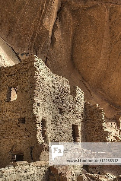 River House Ruin  Ancestral Puebloan Cliff Dwelling  900-1300 AD  Shash Jaa National Monument  Utah  USA.