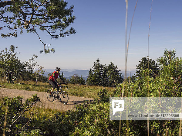 Man riding racing bicycle on cycling tour in the Black Forest  Germany