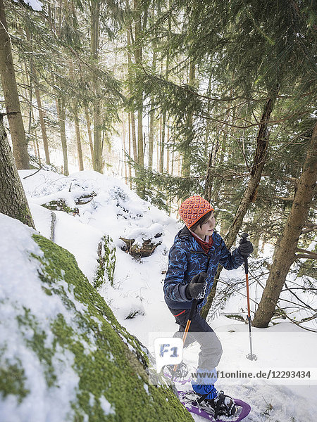 High angle view of a Girl snowshoeing in Black Forest  Germany  Europe
