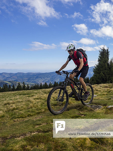 Mountain biker cycling on single trail on Ringelbuhlkopf  Alsace  France