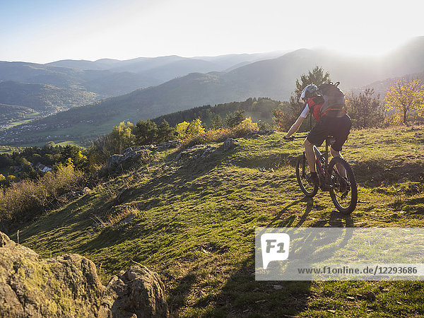 Mountain biker cycling on single trail near the commune of Munster  France
