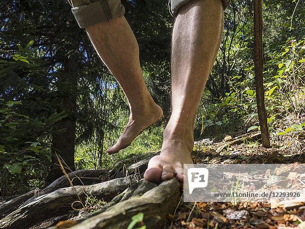 Senior man hiking barefoot in Middle Black Forest Baden-Württemberg  Germany