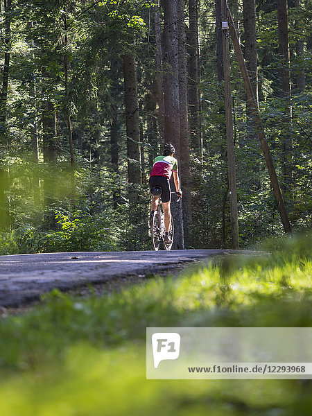 Man riding racing bicycle on cycling tour in the Middle Black Forest  Germany