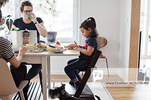 Dog sitting by family having breakfast at dining table in house