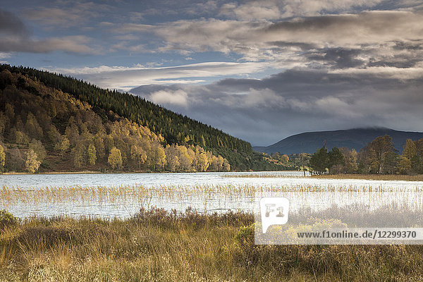 Tranquil  idyllic landscape with autumn hills and lake  Loch Pityoulish  Aviemore  Scotland