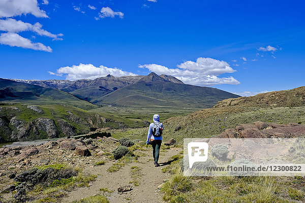 Rear view of female backpacker hiking in scenery with mountains  El Chalten  Santa Cruz Province  Patagonia  Argentina