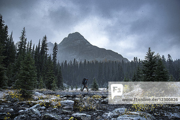 Backpacker passes a wooden bridge over a dried and rockie river bed in British Columbia  Yoho National Park. Mount Schaffer in background.