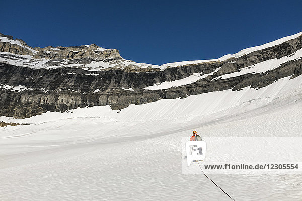 Rear view of male mountain climber on glacier in Rocky Mountains of Banff National Park  Alberta  Canada