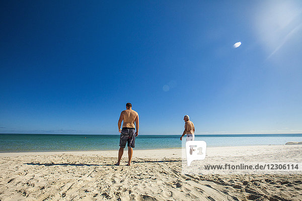 Rear view of two men standing at beach of Eagle Bay  Meelup Regional Park  Western Australia