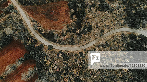 Spanien  Katalonien  Lleida  Luftaufnahme der Straße durch den Wald im Herbst