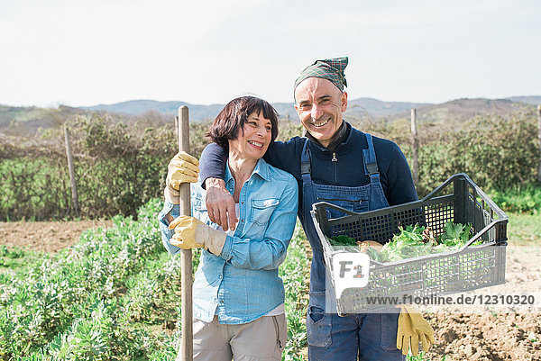 Reifes Paar mit Gemüsekiste im Garten