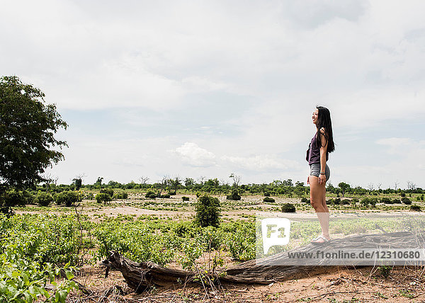 Young female tourist looking out at Chobe National Park  Botswana  Africa